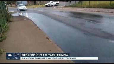 Água jorra na QSC, em Taguatinga - Moradores da região dizem que a água escorre, há pelo menos, 3 meses em frente ao Parque Saburo Onoyama.
