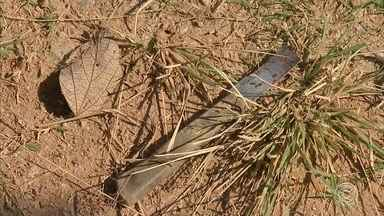 Mulher é morta com facadas no rosto em Campo Limpo Paulista - Uma mulher de 34 anos foi morta na manhã desta quinta-feira (25) no bairro Parque Santana, em Campo Limpo Paulista (SP). O motivo do crime é desconhecido e até agora ninguém foi preso.