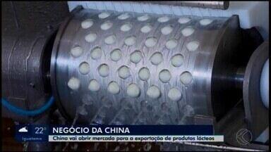 Abertura do mercado chinês para exportação de produtos lácteos anima empresários - Até o momento, 24 empresas brasileiras podem vender produtos para o país asiático.