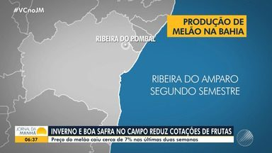 JM no Campo: confira os destaques no cenário do agronegócio baiano - Preço do melão caiu cerca de 7% nas últimas duas semanas.