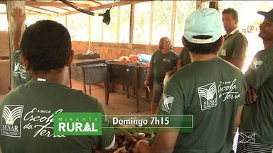 Veja os destaques do 'Mirante Rural' - Programa voltado para o agronegócio é apresentado pela jornalista Jéssica Melo todo domingo pela TV Mirante.