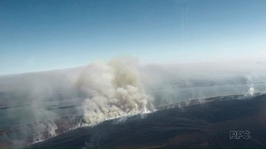Incêndio atinge Parque Nacional de Ilha Grande - Trinta e cinco mil hectares já foram consumidos pelo fogo.