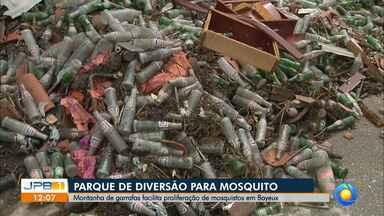 Entulho de garrafas velhas em Bayeux deixa moradores preocupados - Montanha de garrafas facilita proliferação de mosquitos em Bayeux.