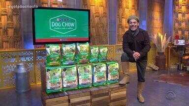 Neto Fagundes apresenta alimento especial da Dog Chow para cães mini e de pequeno porte - Assista ao vídeo.