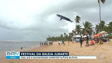 Quarta edição do Festival da Baleia Jubarte termina neste sábado (17) - Evento acontece em Praia do Forte.
