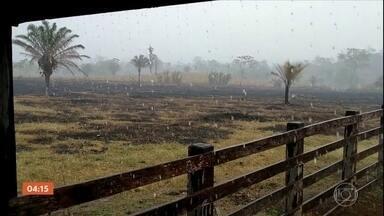 Após mais de 20 dias, incêndio em reserva ambiental em RO é controlado - Uma chuva forte caiu na região e ajudou a apagar as chamas.