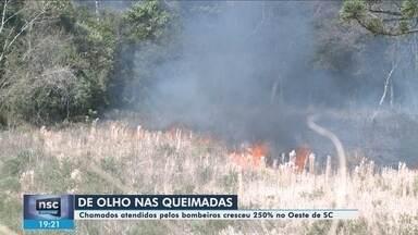 Número de queimadas cresce na região Oeste de SC - Número de queimadas cresce na região Oeste de SC