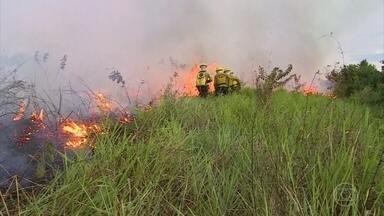 Organização Meteorológica Mundial alerta para o impacto dos incêndios florestais - Organização ligada a ONU fala como as queimadas impactam nas mudanças climáticas. Os dados da NASA confirmam os números do INPE.