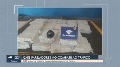 Alfândega descobre contêiner com meia tonelada de cocaína no Porto de Santos - Carregamento seguiria para a Bélgica, na Europa, e foi interceptado durante fiscalização aduaneira no Porto de Santos.