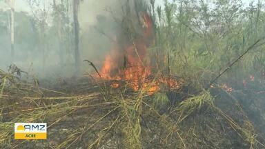 Em Brasília, vice-governador do Acre destaca problemas recorrentes das queimadas - Ele afirma que falta de recursos inviabiliza maior atuação do Governo.
