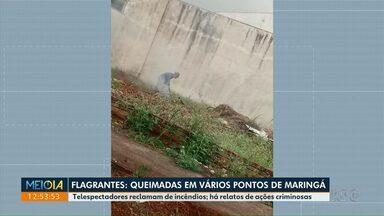 Onda de queimadas traz problemas à população - Só em Maringá foram 244 casos neste ano.