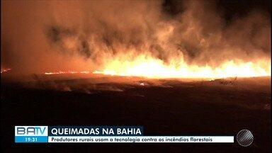 Bahia registra mais de 30 mil focos de incêndios florestais em 2019 - Região oeste é a mais afetada devido às altas temperaturas e a baixa umidade.