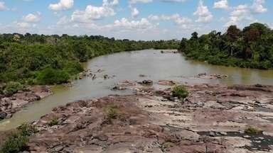 Amazônia e o desmatamento - 1º episódio