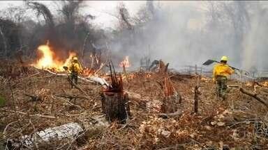 Queimadas na Bolívia deixam autoridades brasileiras em alerta - A principal preocupação é com o avanço do fogo na fronteira com o Brasil.