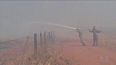 Equipes trabalham para combater incêndios e desmatamentos ilegais na Amazônia - O domingo (1º) foi marcado por uma série de operações para combater os incêndios e desmatamentos ilegais na Amazônia. Uma das regiões mais atingidas pelo fogo está no sul do Amazonas.