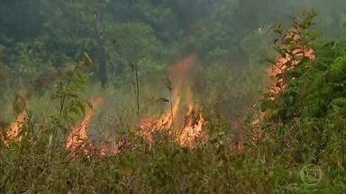 O sul do estado do Amazonas é umas regiões das mais atingidas pelas queimadas no Brasil - Na cidade de Apuí, o Exército ainda não está trabalhando no combate aos incêndios.