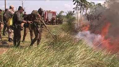 Queimadas na Amazônia em agosto foram as maiores para o mês em nove anos - Inpe divulgou novos números. Governadores pediram à União reforço no combate ao fogo na região das rodovias Cuiabá-Santarém e Transamazônica.