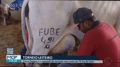 Campeã do torneio leiteiro 2019 em Uberlândia tem produção média de 71 kg de leite por dia - Quase 40 vacas das raças Gir leiteiro e Girolando participaram da competição deste ano. Em 15 anos, já foram batidos dois recordes mundiais e cinco nacionais.
