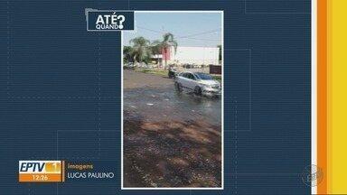 Após cobrança, Daerp conserta vazamento de água na Avenida Caramuru - Problema acontecia em uma das ruas mais movimentadas da zona Oeste.
