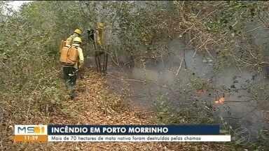Incêndios causam devastação em Porto Morrinho - Fogo começou ainda na semana passada