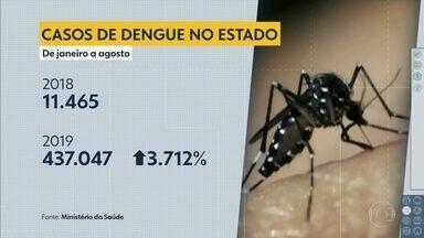 Casos de dengue têm aumento de mais de 3.000% no estado de São Paulo - São José do Rio Preto é a cidade com mais casos