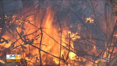 Número de queimadas volta a subir no Maranhão - Os municípios que ficam no cerrado são os que mais registraram focos de incêndio nos últimos dias.
