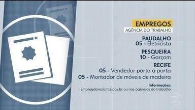 Confira vagas disponíveis na Agência de Trabalho - Há oportunidades para as cidades de Paudalho, Pesqueira e Recife.