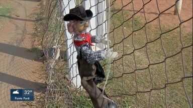 Liga Terrão começa no domingo - Neste domingo começa a Liga Terrão MS, é o futebol amador de Mato Grosso do Sul. 64 times, 1700 atletas. São os craques dos bairros que vão levantar um poeirão na segunda edição do campeonato.