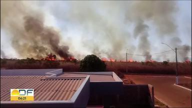 Número de incêndios florestais continua crescendo no DF - De janeiro até agora, foram registradas 7.598 ocorrências de queimadas em vegetação. No ano passado, de janeiro até o fim de setembro, foram 6.113.