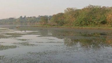 Sem chuva há onze dias, DAE reduz novamente vazão da captação do rio Batalha - Na última segunda-feira (16), a lagoa que abastece cerca de 140 mil moradores de Bauru passou a funcionar com vazão de 430 litros por segundo.