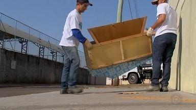Projeto Cidade Limpa inicia coleta de materiais em Lençóis Paulista - A partir desta terça-feira (17), o projeto Cidade Limpa estará em Lençóis Paulista. Os caminhões vão começar a passar pelos bairros às 8h para recolher os materiais deixados na calçada pelos moradores.