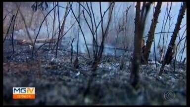 Incêndios são combatidos todos os dias pelo Corpo de Bombeiros em Divinópolis - Conforme os militares, muitas vezes o fogo é ateado de forma criminosa. Em Minas Gerais, o aumento no número de registros já é de 45%. Colocar fogo em lotes é crime e o responsável pode ser multado.