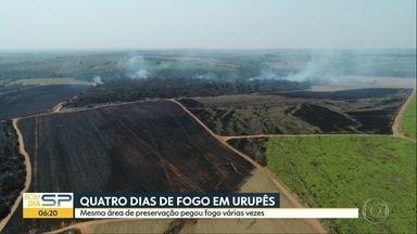 Fogo em mata de Urupês dura quatro dias - Mesma área de preservação pegou fogo várias vezes.