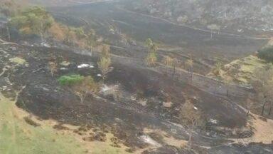 Queimada atinge área de sítios, chácaras e fazendas entre Jaú, Bariri e Bocaina - Uma queimada de grandes proporções está devastando uma grande área de vegetação que abrange os municípios de Jaú, Bariri e Bocaina (SP). Segundo os bombeiros, o incêndio já está sendo considerado o maior da história na zona rural da região.