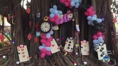 """Festival Literário acontece nesta sexta-feira em Urânia - O Festival Literário vai ser realizado nesta sexta-feira (20), em Urânia (SP). O tema desta edição é """"O Mundo Mágico dos Livros Infantis""""."""