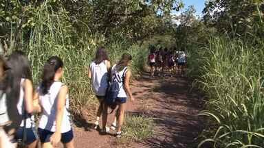 Escola da região oeste da Bahia ensina importância de preservar o meio ambiente - Instituição é especializada no assunto.