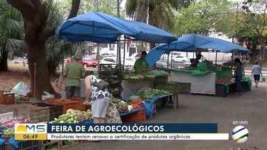 Produtores de MS tentam renovar a certificação de produtos orgânicos - Conheça sobre a feira de agroecológicos.