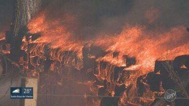 Bombeiros e moradores estão preocupados com risco de fogo nas matas de Ribeirão Preto - Vegetação seca fica vulnerável a incêndios. Não deve chover nos próximos dias.