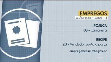 Confira vagas de emprego na Agência do Trabalho - Há oportunidades tanto no Recife, quanto no interior.
