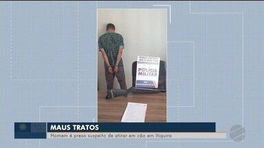 Homem é preso suspeito de atirar em cão em Itiquira (MT) - Homem é preso suspeito de atirar em cão em Itiquira (MT)