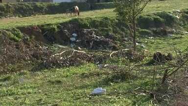Prefeitura de Marília aumenta em 400% multa por terreno sujo - Em Marília, a multa para quem não cuida da manutenção de terrenos está pesando mais no bolso depois que a prefeitura aumentou de valor em 400%.