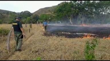 Fiscais do Ibama flagram produtor rural colocando fogo em área da Chapada dos Veadeiros - Ele foi autuado por usar fogo sem autorização e desrespeitar decreto que proíbe colocar fogo em terrenos por 60 dias. Além disso, ele vai ser multado em R$ 1 mil por hectare.