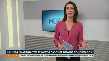 Maringá tem 17 novos casos de dengue confirmados - Avanço da doença foi confirmado pela Sesa.
