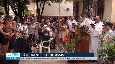Missa de bênção dos animais e plantas é realizada em Santarém - A bênção foi concedida na Igreja São Francisco.