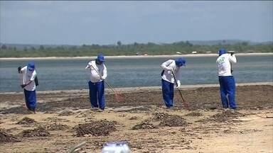Manchas de óleo chegam à foz do Rio São Francisco - Contenção dos danos ambientais esbarra agora na falta de equipamentos. Ministro do Meio Ambiente admitiu falhas no controle de atividades de risco.