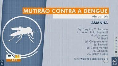 Mutirão contra a dengue percorre bairros de Presidente Prudente - São recolhidos materiais que possam servir de criadouros do mosquito Aedes aegypti.