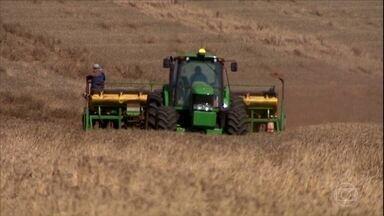 Plantio de soja está atrasado no Paraná, mas expectativas é de safra maior - Produtores aproveitam a volta das chuvas no estado para terminar a semeadura do grão.