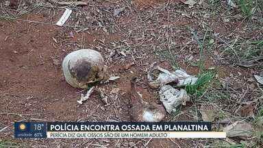 Polícia encontra ossada em área de mata de Planaltina - De acordo com a perícia, os ossos são de um homem adulto.