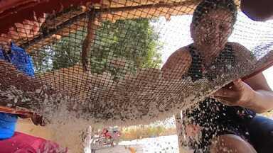 Família de lavradores mantém tradição de fabricar farinha de forma artesanal - Eles trabalham em uma fazenda localizada em São Desidério, oeste baiano.