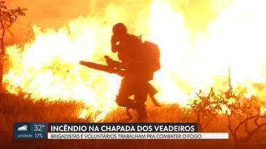 Incêndio na Chapada dos Veadeiros - Voluntários e brigadistas combatem fogo que já dura quase uma semana.
